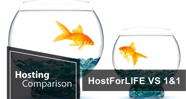Hostforlife VS 1&1 Europe ASP.NET Hosting Comparison